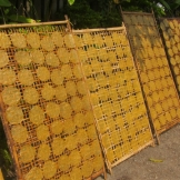 Sweet rice patties drying in the sun