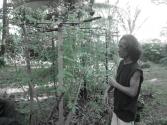 Bhakto